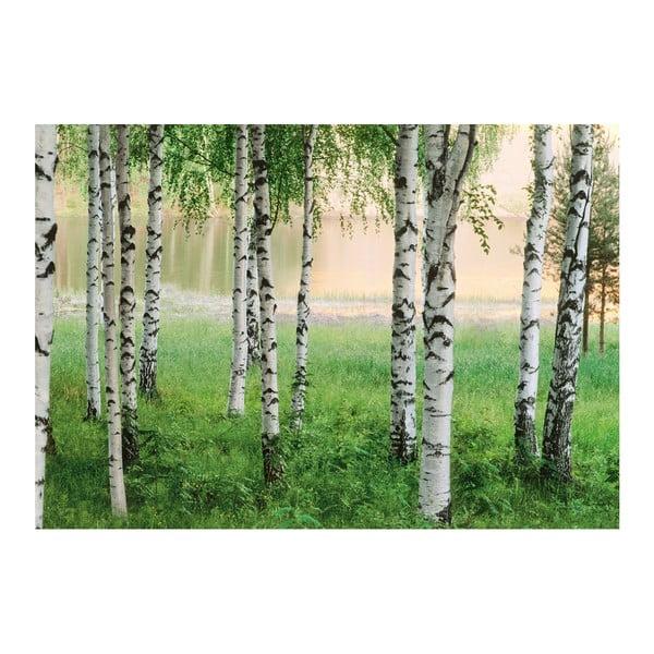 Wielkoformatowa tapeta Skandynawski las, 366x254 cm