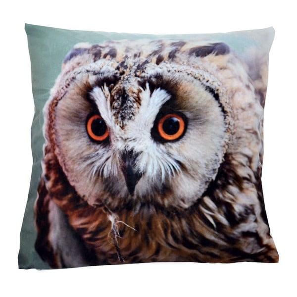 Poduszka Animals Owl, 42x42 cm