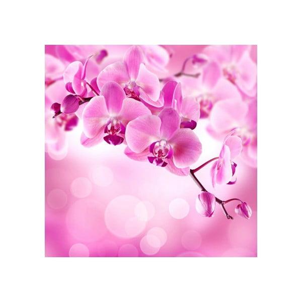 Obraz na szkle Orchidea II, 20x20 cm
