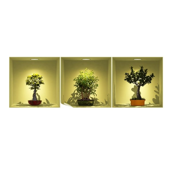 Zestaw 3 naklejek 3D Ambiance Bonsai Trees On Spot