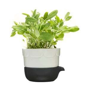 Zielona   doniczka Sagaform z miską do podlewania