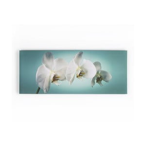 Obraz Graham & Brown Teal Orchid,100x40cm
