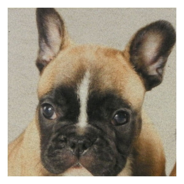 Mata stołowa Mars&More French Bulldog Puppies 40x30 cm