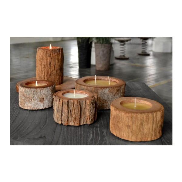 Palmowa świeczka Legno Bordeux Senses o zapachu owoców egzotycznych, 80 godz.