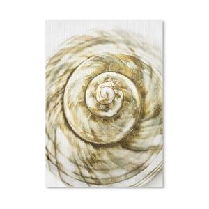 Plakat Sea Shell