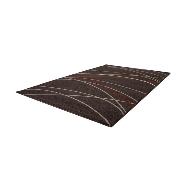 Brązowy dywan Champiopm 160x230 cm