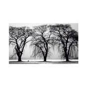 Obraz Black&White no. 21, 41x70 cm