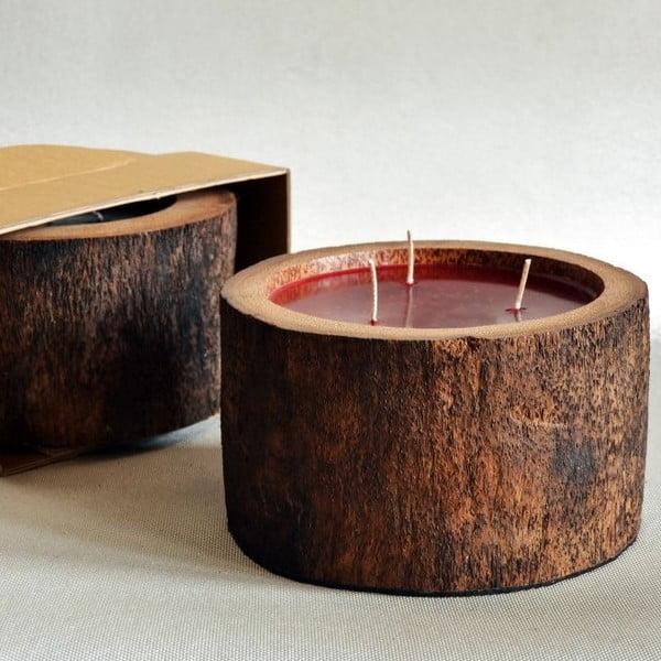 Palmowa świeczka Legno Bordeux o zapachu owoców egzotycznych, 100 godz.