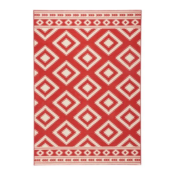 Czerwony dywan Hanse Home Gloria Ethno, 200x290 cm