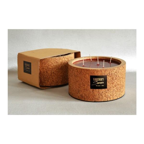 Palmowa świeczka Legno Bordeux o zapachu owoców egzotycznych, 120 godz.
