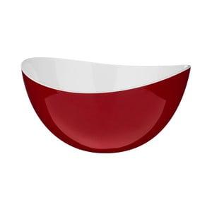 Czerwona miska Premier Housewares