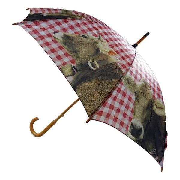Parasol Alpine Cow