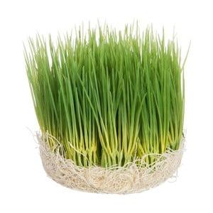 Dekoracja Grass, 12x12x12 cm