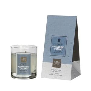 Świeczka zapachowa Fragrance, kwitnący ocean