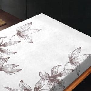 Prześcieradło Alma Gris, 240x260 cm