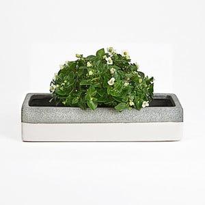Ceramiczna doniczka Jungle Krem, 26,5x12x5,5 cm