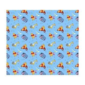 Foto zasłona AG Design Disney Kubuś Puchatek III, 160x180cm