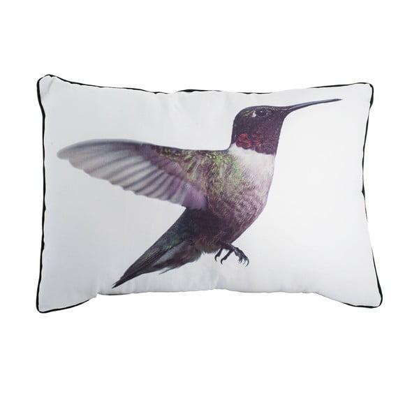 Poduszka Fisura Hummingbird, 40x60 cm
