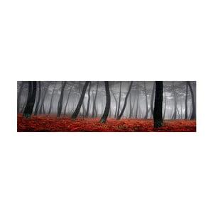 Obraz na szkle Las, 40x120 cm