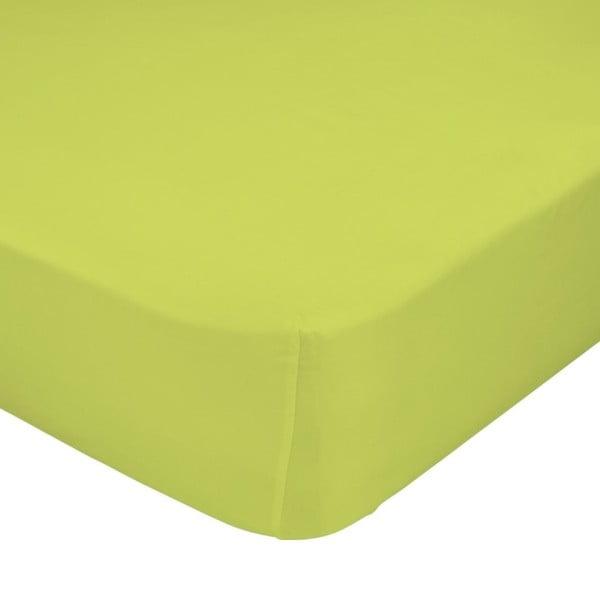 Zielone elastyczne prześcieradło HF Living Basic, 90x200 cm