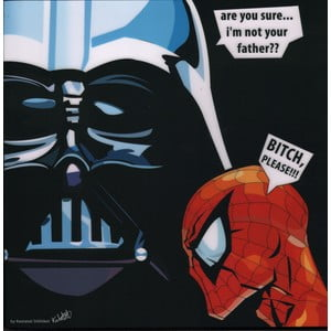 "Obraz ""Darth Vader - are you sure I am not your father"""