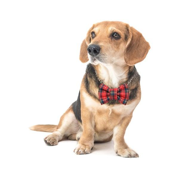 Mucha dla psa Funky Dog Bow Ties, roz. M, w czerwono-zieloną kratkę
