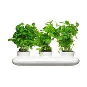 Porcelanowa doniczka na zioła Sagaform Trio Herb