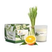 Świeczka o zapachu trawy cytrynowej HF Living