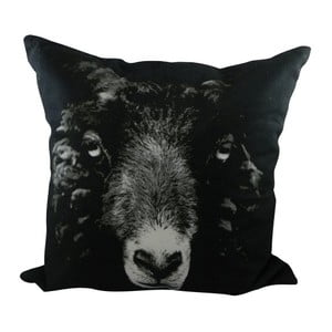 Poduszka Sepia Black Sheep 50x50 cm