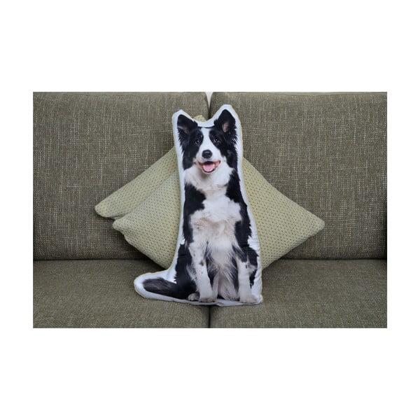 Poduszeczka Adorable Cushions Border kolie
