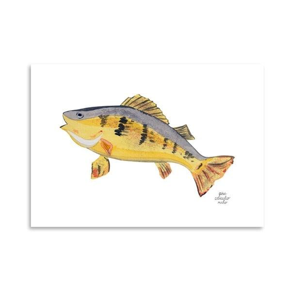 Autorski plakat Fish, 30x42 m
