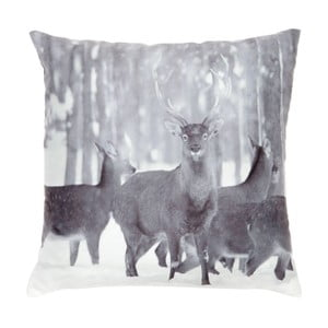 Poduszka Black Deer, 45x45 cm
