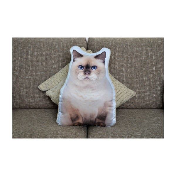 Poduszeczka Adorable Cushions Kot brytyjski