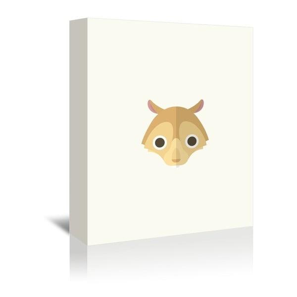 Obraz na płótnie Squirrel