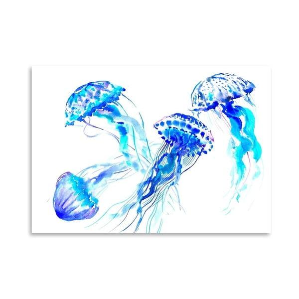 Plakat Jellyfish