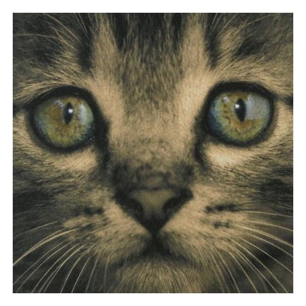 Dywanik Kitten Green Eyes
