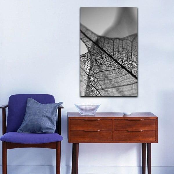 Obraz Black&White Microscope, 45x70 cm