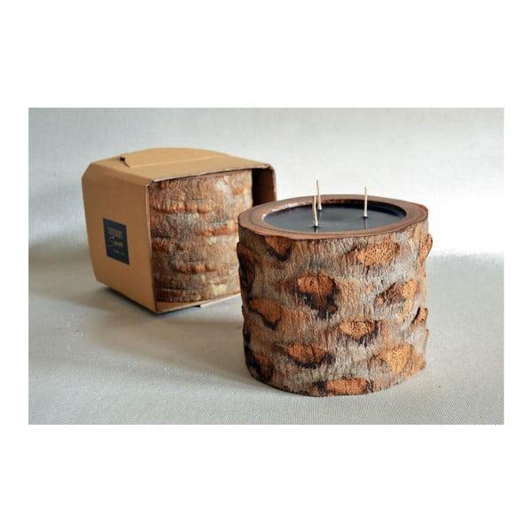 Palmowa świeczka Legno Ebony o zapachu lilii wodnej, 100 godz.
