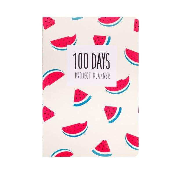 Organizer Languo 100 Days Meloun