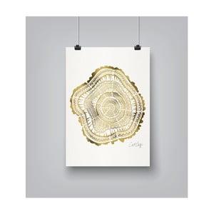 Plakat Americanflat Tree Rings, 30x42 cm