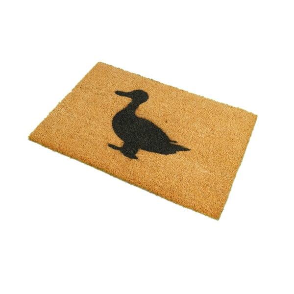 Wycieraczka Artsy Doormats Duck, 40x60 cm