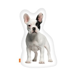 Poduszka French Bulldog, 40x30 cm