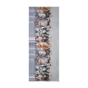 Wytrzymały dywan kuchenny Webtappeti Gatti, 58x115cm