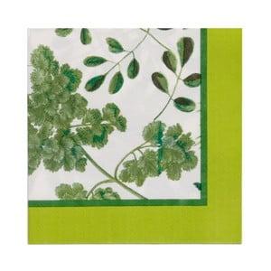 Zestaw 20 serwetek papierowych Ulster Weavers Foliage
