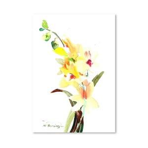 Plakat Orchids Light