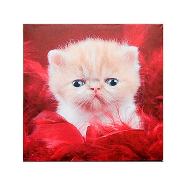 Drewniana tabliczka Grey Cat, 30x30 cm