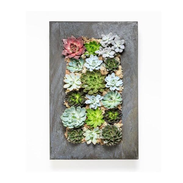 Doniczka naścienna z sukulentami Wall, 72x45 cm