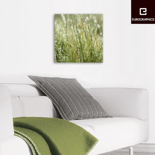 Szklany obraz Sparkling Grasses, 30x30 cm