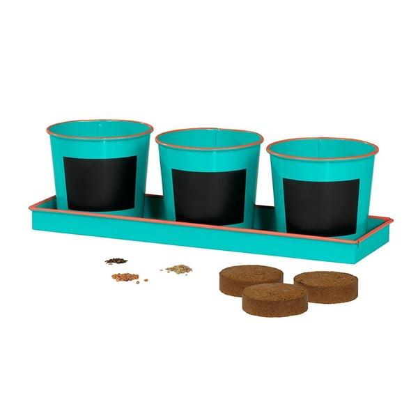 Zestaw 3 doniczek z sadzonką Plant Pots & Seed