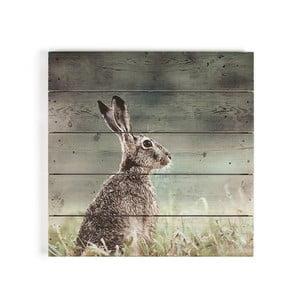 Obraz na drewnie Graham & Brown Hare, 50x50 cm